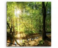 Landschaftsfotografie – Waldbach in der Sonne auf Leinwand exklusives Wandbild moderne Fotografie fü