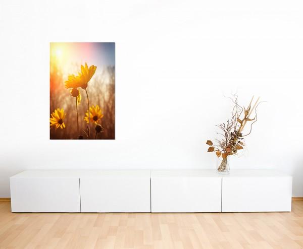 120x80cm Blume Blüte Sonnenaufgang Frühling