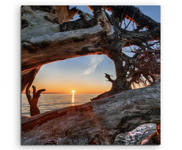 Naturfotografie – Treibholz am Strand bei Sonnenaufgang auf Leinwand
