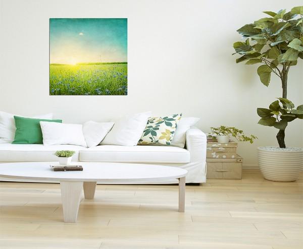 80x80cm Kornblumen Feld Sonnenuntergang Frühling