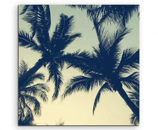 Naturfotografie – Wunderschöne Palmensilhouette auf Leinwand