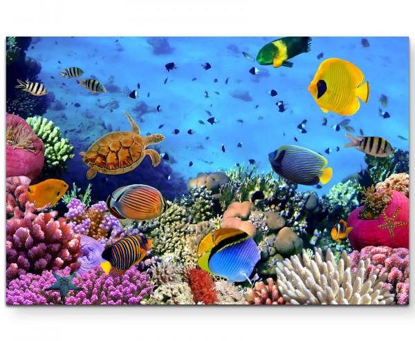 Fotografie – Korallenriff im roten Meer - Leinwandbild