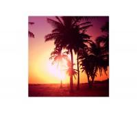 80x80cm Strand Meer Palmen Sonne Abendrot