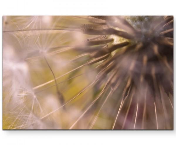 Pusteblume – Fotografie - Leinwandbild