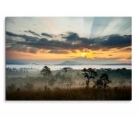 120x80cm Wandbild Thailand Landschaft Wiesen Bäume Sonnenaufgang