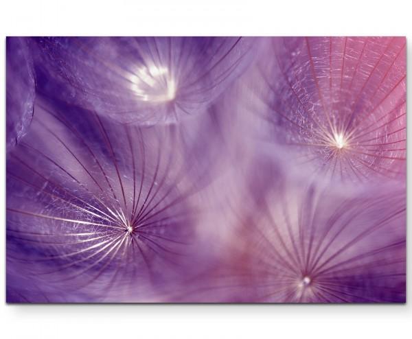 Makrofotografie – Pusteblumenschirmchen in Violett - Leinwandbild