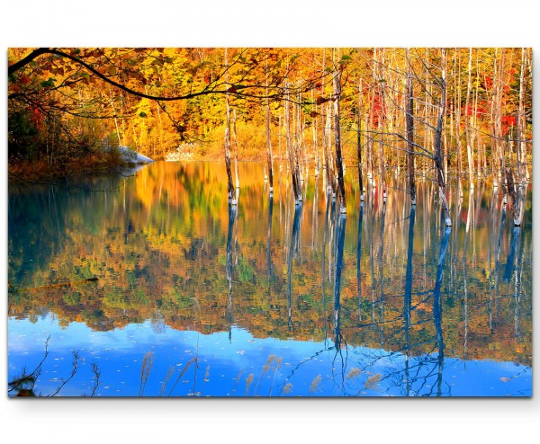 Herbstwald - Leinwandbild