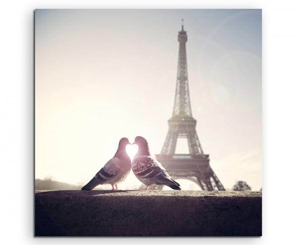 Fotografie – Turteltauben vor dem Eiffelturm Paris auf Leinwand exklusives Wandbild moderne Fotograf