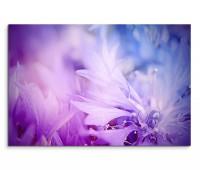 120x80cm Wandbild Kornblumen Blüten Nahaufnahme abstrakt