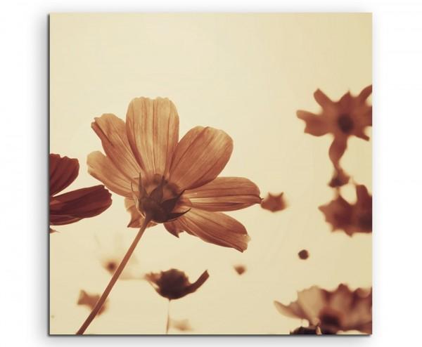 Naturfotografie – Retro Blumen mit Sepia Himmel auf Leinwand