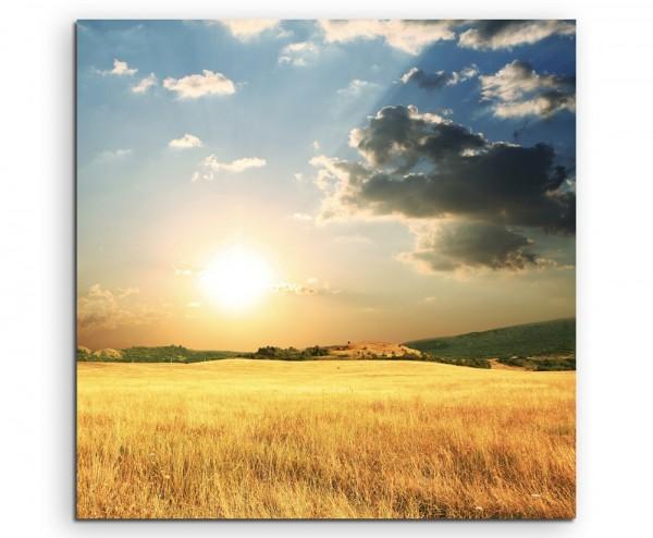 Landschaftsfotografie – Goldenes Weizenfeld auf Leinwand