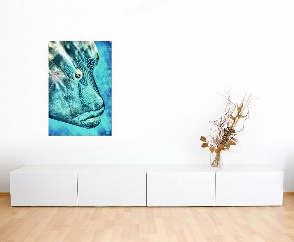 120x80cm Napoleon-Lippfisch Korallenfisch