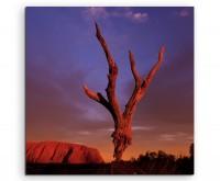 Landschaftsfotografie – Uluru bei Sonnenaufgang, Australien auf Leinwand