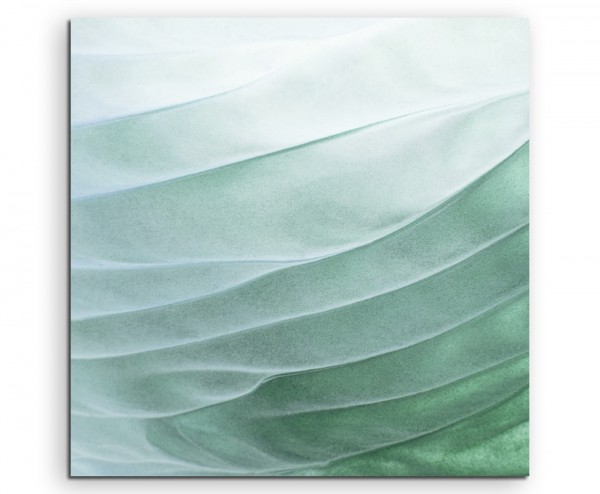 Naturfotografie – Grünes Blatt auf Leinwand