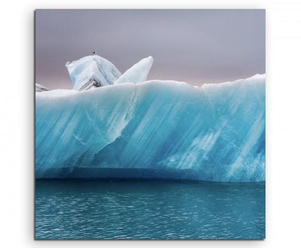 Landschaftsfotografie – Möwen auf Eis, Island auf Leinwand