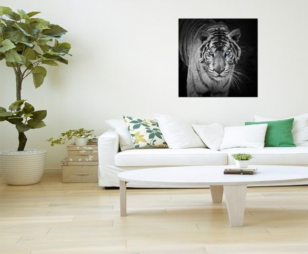 80x80cm Tiger Augen schwarz/weiß
