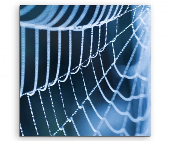 Naturfotografie – Spinnweben mit Morgentau auf Leinwand