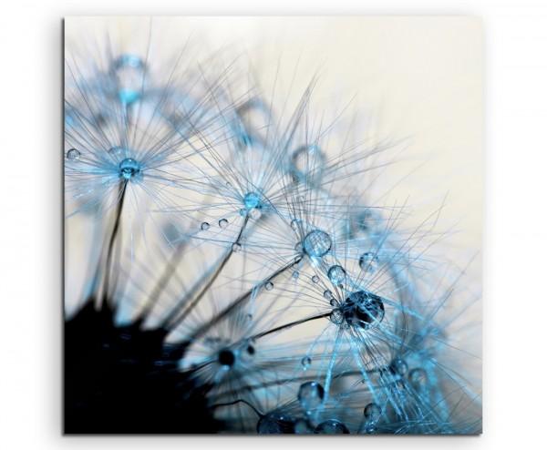 Naturfotografie – Makroaufnahme einer Pusteblumen auf Leinwand