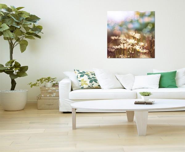 80x80cm Kamille Feld Blumen Frühling Licht