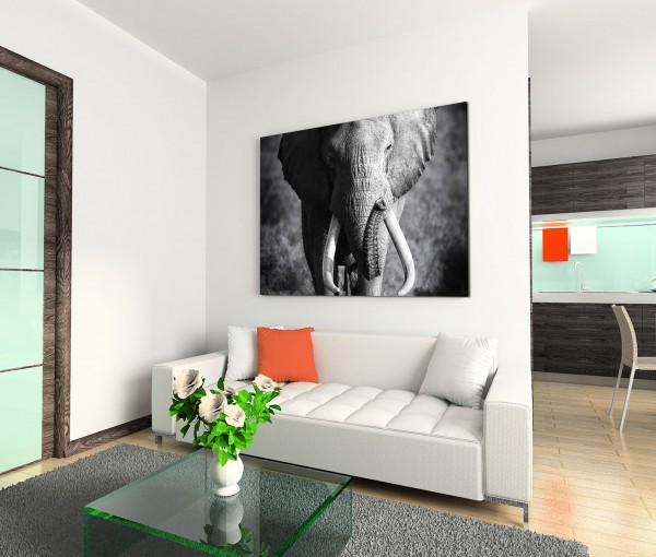 120x80cm Wandbild Elefant Bulle