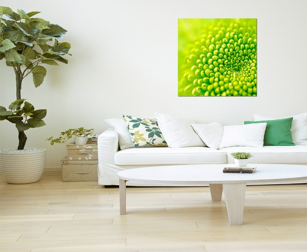 80x80cm Pflanze Blume grün makro