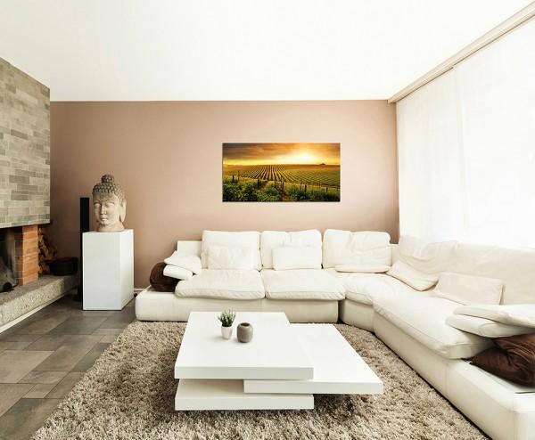 120x60cm Weinberge Natur Landschaft Sonnenuntergang