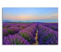 120x80cm Wandbild Provence Lavendelfeld Dämmerung