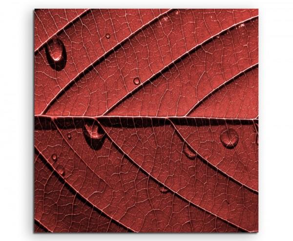Naturfotografie – Struktur eines roten Laubblatts auf Leinwand