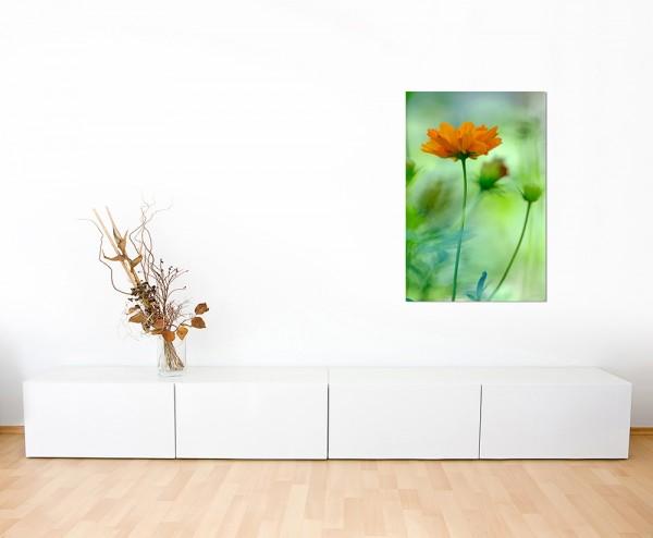 120x80cm Blume orange Hintergrund grün