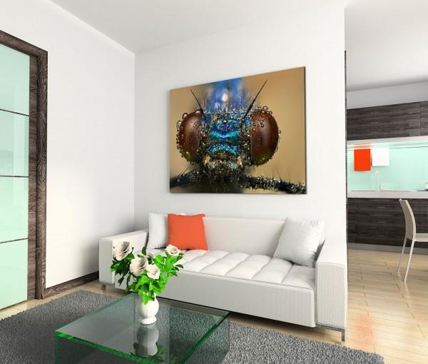 120x80cm Wandbild Insekt Kopf Tropfen Nahaufnahme