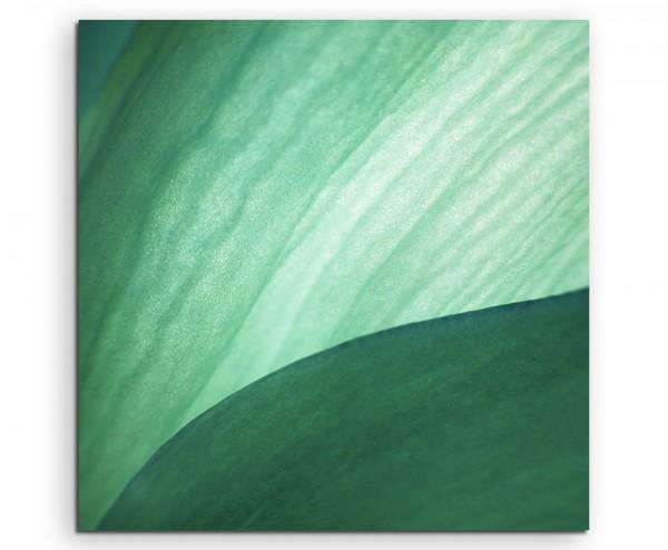 Künstlerische Fotografie – Jadefarbene Blätter auf Leinwand