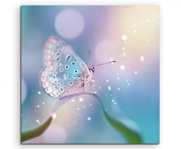 Weißer Schmetterling auf Grashalm auf Leinwand exklusives Wandbild moderne Fotografie für ihre Wand