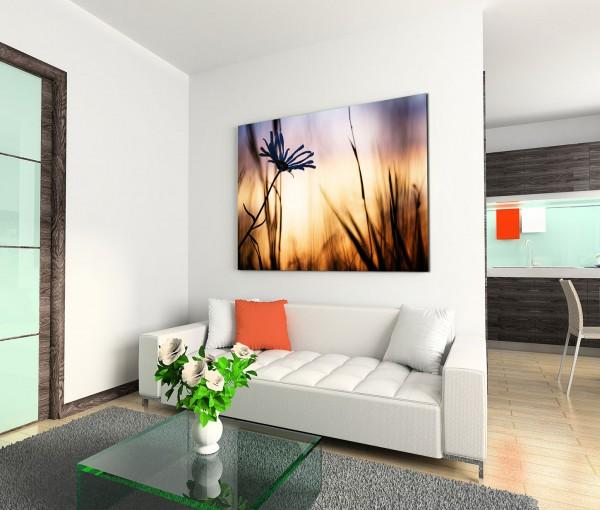 120x80cm Wandbild Feld Kornblume Sommer Sonnenuntergang