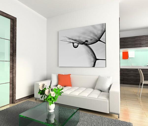 120x80cm Wandbild Pusteblumen Wassertropfen Makroaufnahme