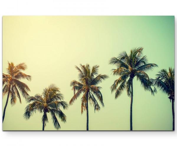 Kokosnuss Palmen – Retro - Leinwandbild