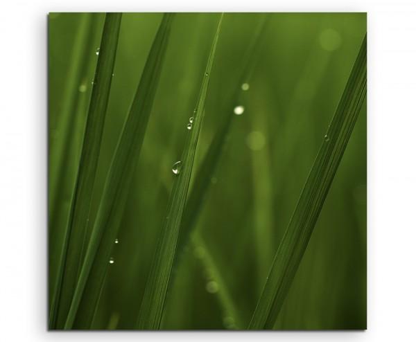 Naturfotografie – Reisblätter auf Leinwand