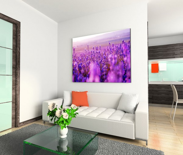 120x80cm Wandbild Lavendelfeld Sommer
