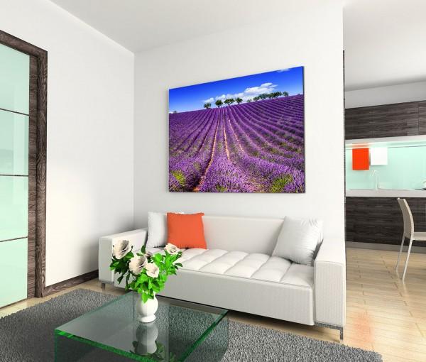 120x80cm Wandbild Provenxe Lavendelfeld Bäume Sommer
