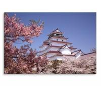 120x80cm Wandbild Japan Fukushima Gebäude Kirschbäume