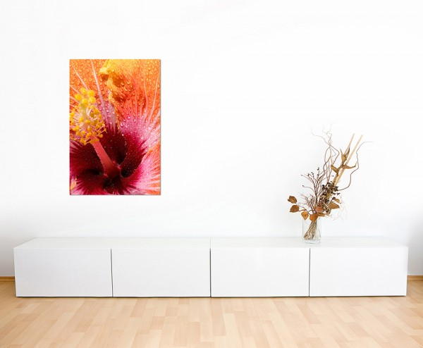 120x60cm Hibiskusblüte Wassertropfen makro