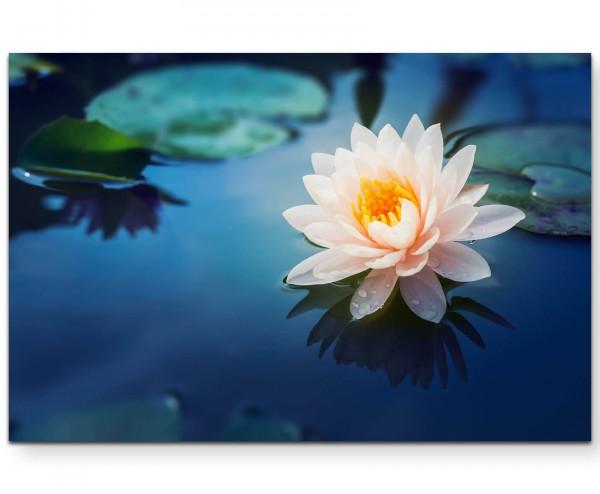 Wunderschöne Lotusblüte - Leinwandbild