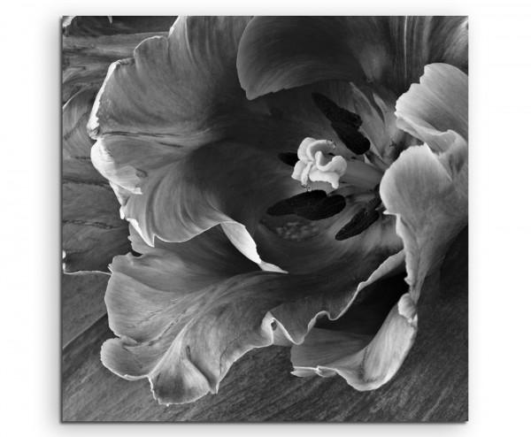 Künstlerische Fotografie – Tulpe auf Holz auf Leinwand