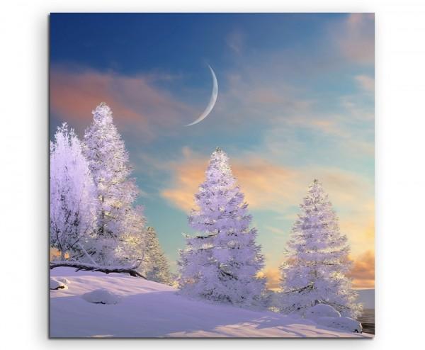 Landschaftsfotografie – Baumgruppe im Schnee mit Mond auf Leinwand exklusives Wandbild moderne Foto