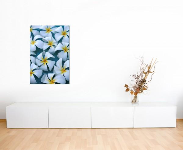 120x60cm Plumeria Blüte Blume Wasser exotisch