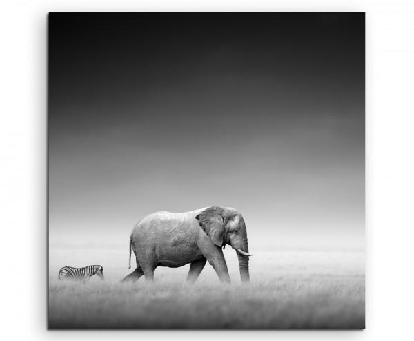 Tierfotografie – Elefant und Zebra auf Leinwand