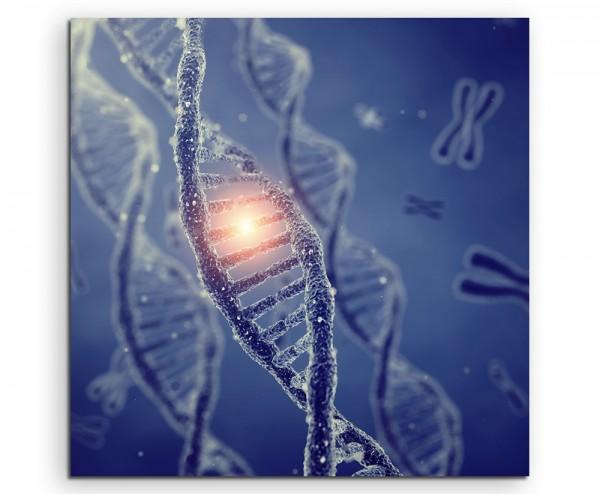Medizinische Abbildung – DNA Doppelhelix Moleküle mit Chromosomen auf Leinwand exklusives Wandbild m