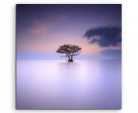 Landschaftsfotografie – Einsamer Baum im Nebel auf Leinwand exklusives Wandbild moderne Fotografie f
