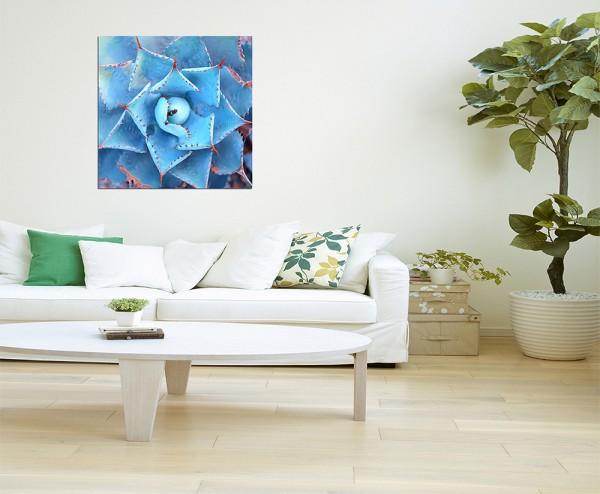 80x80cm Agave Pflanze Nahaufnahme blaugrau