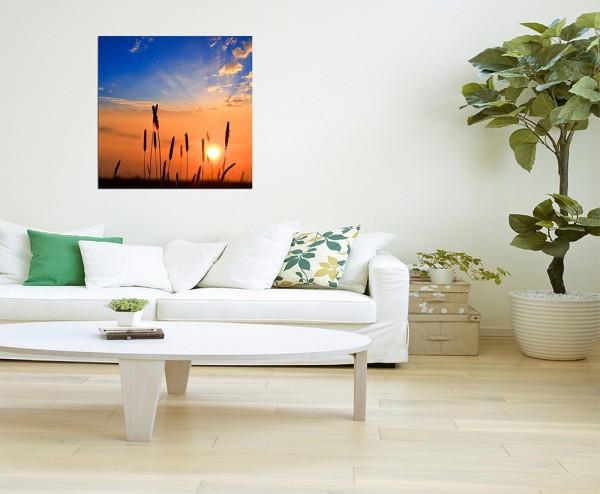 80x80cm Gräser Sonnenuntergang Wiese