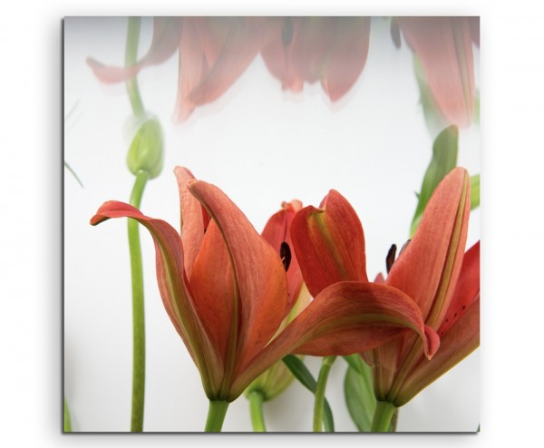 Naturfotografie – Rote asiatische Lilien auf Leinwand